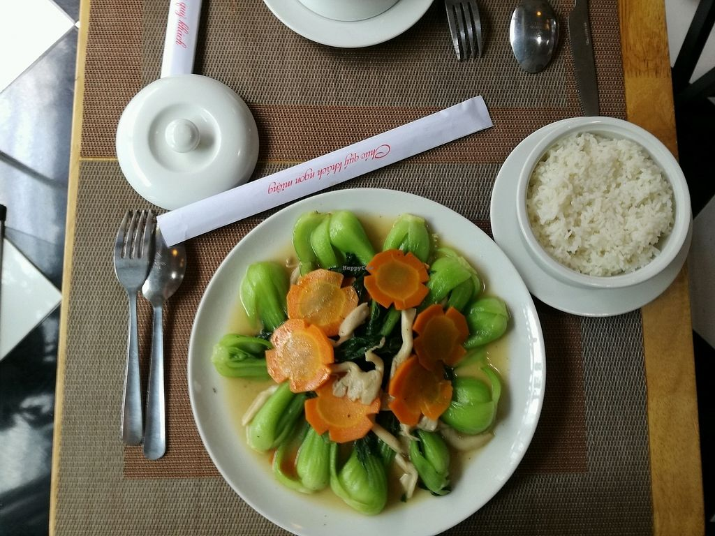 "Photo of CLOSED: Spring Lotus - Duong Sinh Chay  by <a href=""/members/profile/sophieeeee"">sophieeeee</a> <br/>veggies and rice.ordered this everyday it was so delicious.beautiful presentation too  <br/> December 8, 2017  - <a href='/contact/abuse/image/90983/333338'>Report</a>"