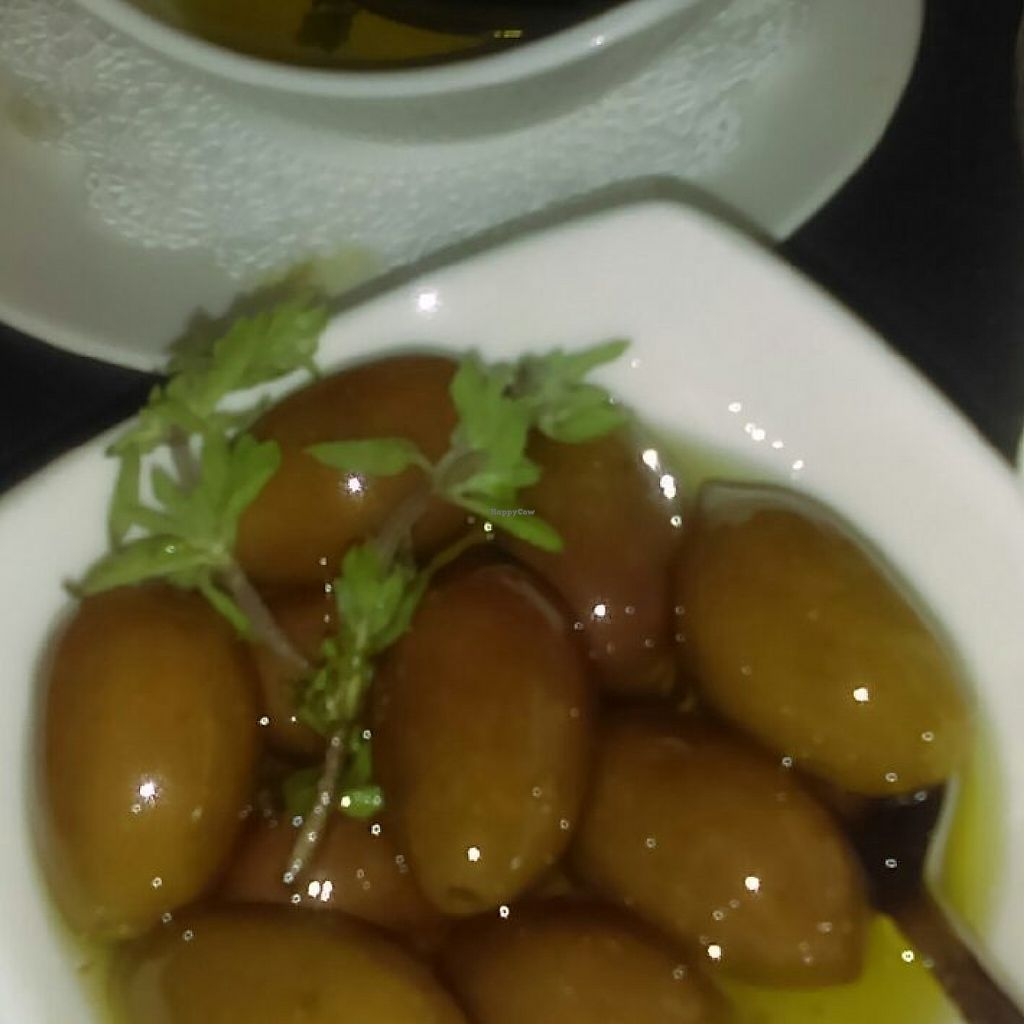 "Photo of Carol's Organic Eatery   by <a href=""/members/profile/Donato"">Donato</a> <br/> olives soaked in olive oil <br/> May 6, 2017  - <a href='/contact/abuse/image/91037/256027'>Report</a>"