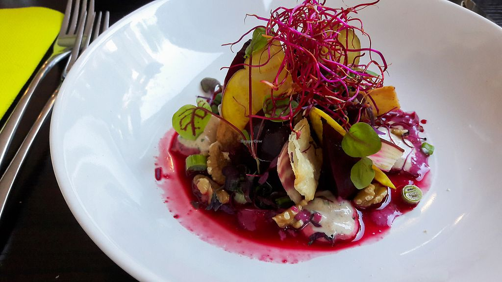 """Photo of Farbenfroh  by <a href=""""/members/profile/DusselDaene"""">DusselDaene</a> <br/>Beetroot salad <br/> May 26, 2017  - <a href='/contact/abuse/image/91327/262574'>Report</a>"""