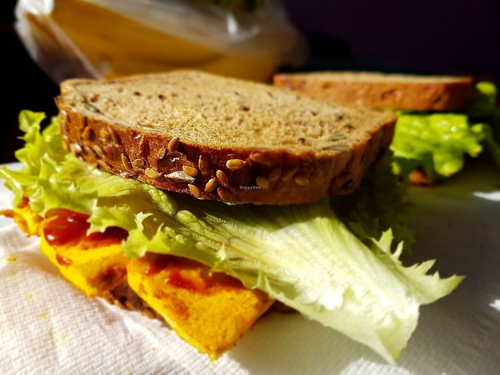 """Photo of CLOSED: Vegan Food Tours  by <a href=""""/members/profile/chriskkala"""">chriskkala</a> <br/>Grilled tofu sandwitch <br/> May 9, 2017  - <a href='/contact/abuse/image/91365/257371'>Report</a>"""