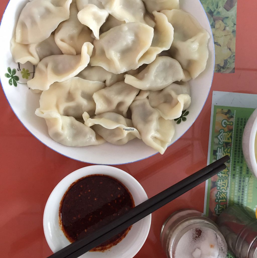 """Photo of Vegetable Dumplings with Full Stuffing  by <a href=""""/members/profile/H2OAddict"""">H2OAddict</a> <br/>Vegan jiaozi! <br/> April 30, 2017  - <a href='/contact/abuse/image/91369/254397'>Report</a>"""