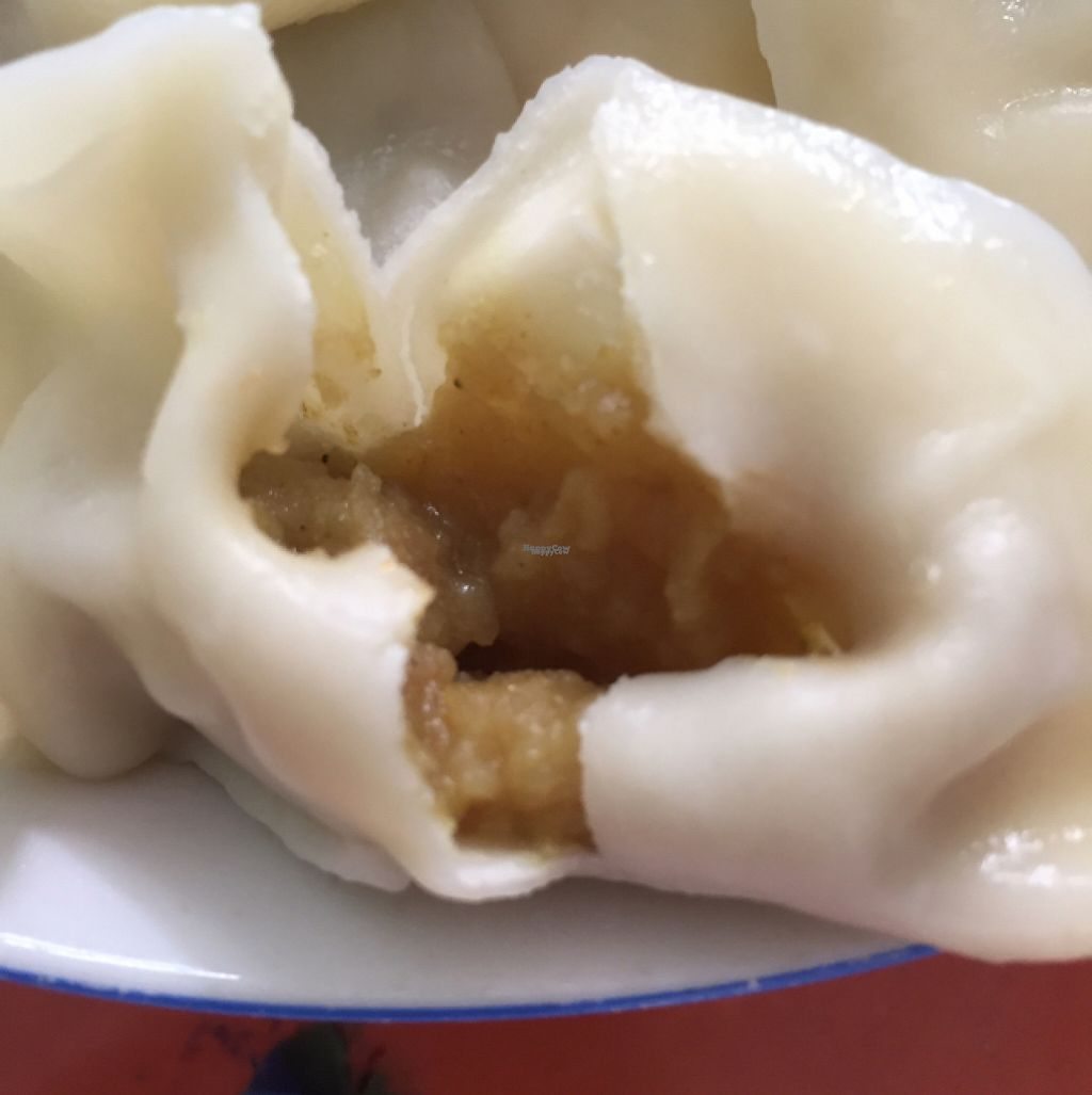 """Photo of Vegetable Dumplings with Full Stuffing  by <a href=""""/members/profile/H2OAddict"""">H2OAddict</a> <br/>A curried potato jiaozi filling <br/> April 30, 2017  - <a href='/contact/abuse/image/91369/254398'>Report</a>"""