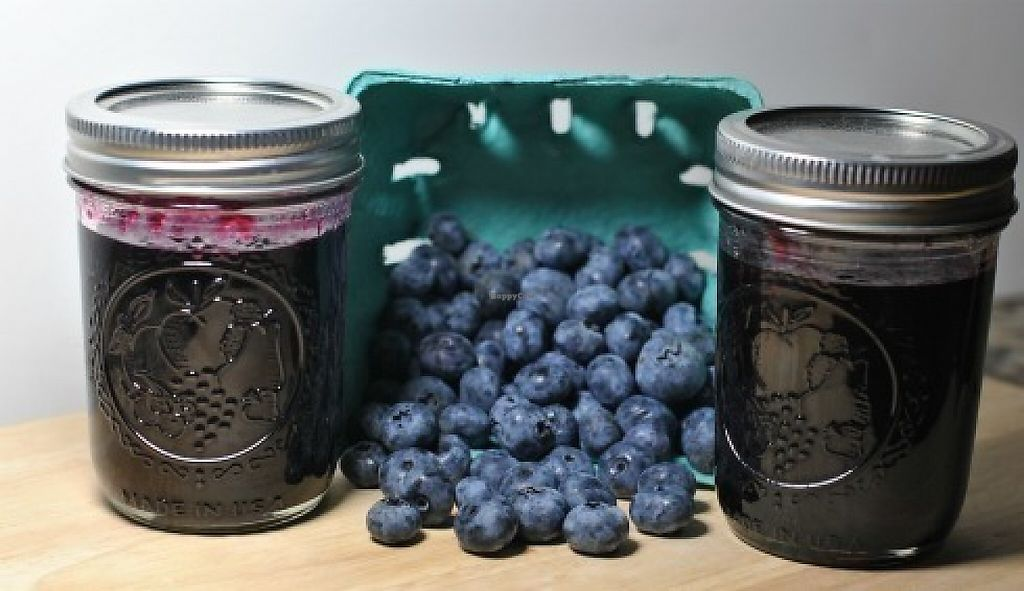 "Photo of Lake Worth Green Market  by <a href=""/members/profile/adguy4all%40gmail.com"">adguy4all@gmail.com</a> <br/>Lake Worth Green Market Home-Made Organic Blueberry Jam <br/> May 29, 2017  - <a href='/contact/abuse/image/91457/263860'>Report</a>"