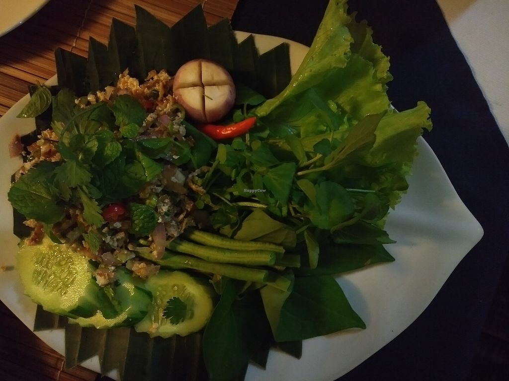 """Photo of Bamboo Tree Lao Cooking School and Restaurant  by <a href=""""/members/profile/Kkdempsey"""">Kkdempsey</a> <br/>Tofu salad <br/> November 27, 2017  - <a href='/contact/abuse/image/91511/329725'>Report</a>"""