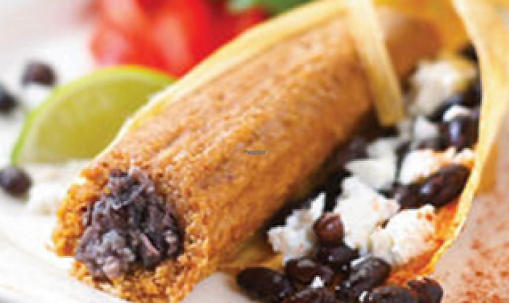 """Photo of Hot Damn Tamales  by <a href=""""/members/profile/HotDamnTamales"""">HotDamnTamales</a> <br/>Black Bean Oaxaca Cheese Tamales No Lard Gluten-Free <br/> January 10, 2017  - <a href='/contact/abuse/image/9152/227819'>Report</a>"""