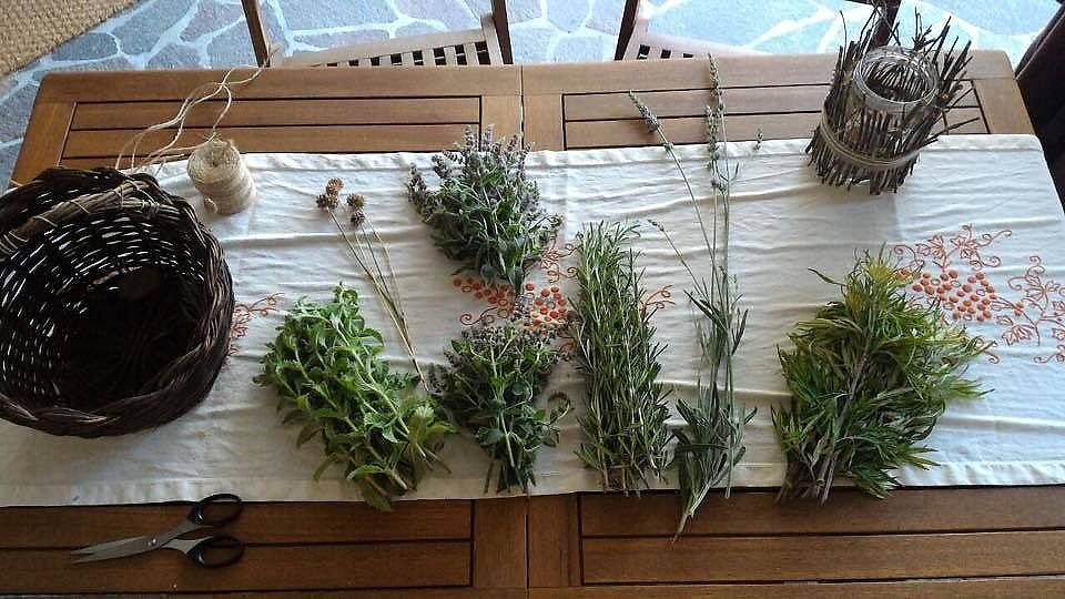 """Photo of ErbOsteria  by <a href=""""/members/profile/FrancescaSchillaci"""">FrancescaSchillaci</a> <br/>Our Aromatical Herbs: Lavender, Rosmary, Mint, Garlic <br/> July 21, 2017  - <a href='/contact/abuse/image/91574/282834'>Report</a>"""