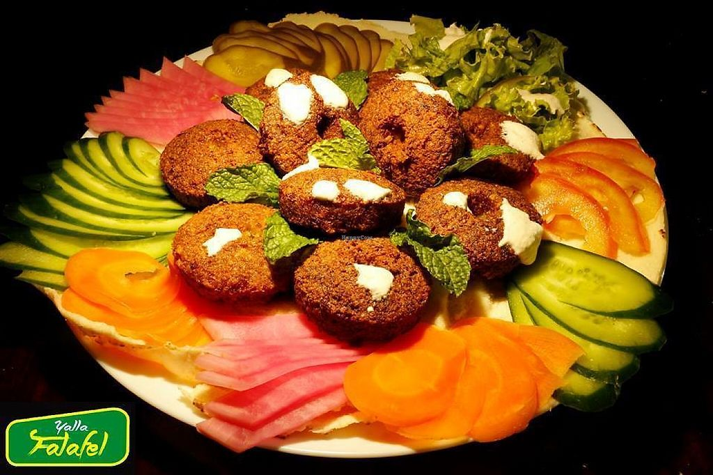 """Photo of Yalla Falafel  by <a href=""""/members/profile/bfeitosa"""">bfeitosa</a> <br/>Falafels with hummus <br/> May 3, 2017  - <a href='/contact/abuse/image/91586/255297'>Report</a>"""