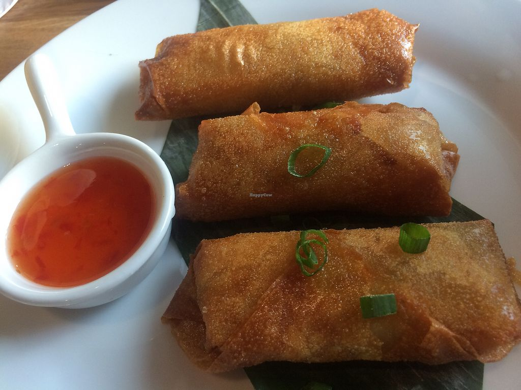 """Photo of Warung Jakarta  by <a href=""""/members/profile/MattNewton-Walters"""">MattNewton-Walters</a> <br/>Spring rolls <br/> June 27, 2017  - <a href='/contact/abuse/image/91724/273912'>Report</a>"""