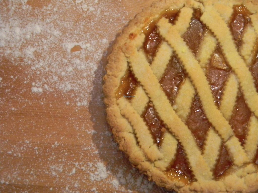 """Photo of Gabriele's Family Food  by <a href=""""/members/profile/gabrielepanozzo"""">gabrielepanozzo</a> <br/>Italian Apricot Jam Tart """"crostata"""" <br/> May 7, 2017  - <a href='/contact/abuse/image/91733/256599'>Report</a>"""