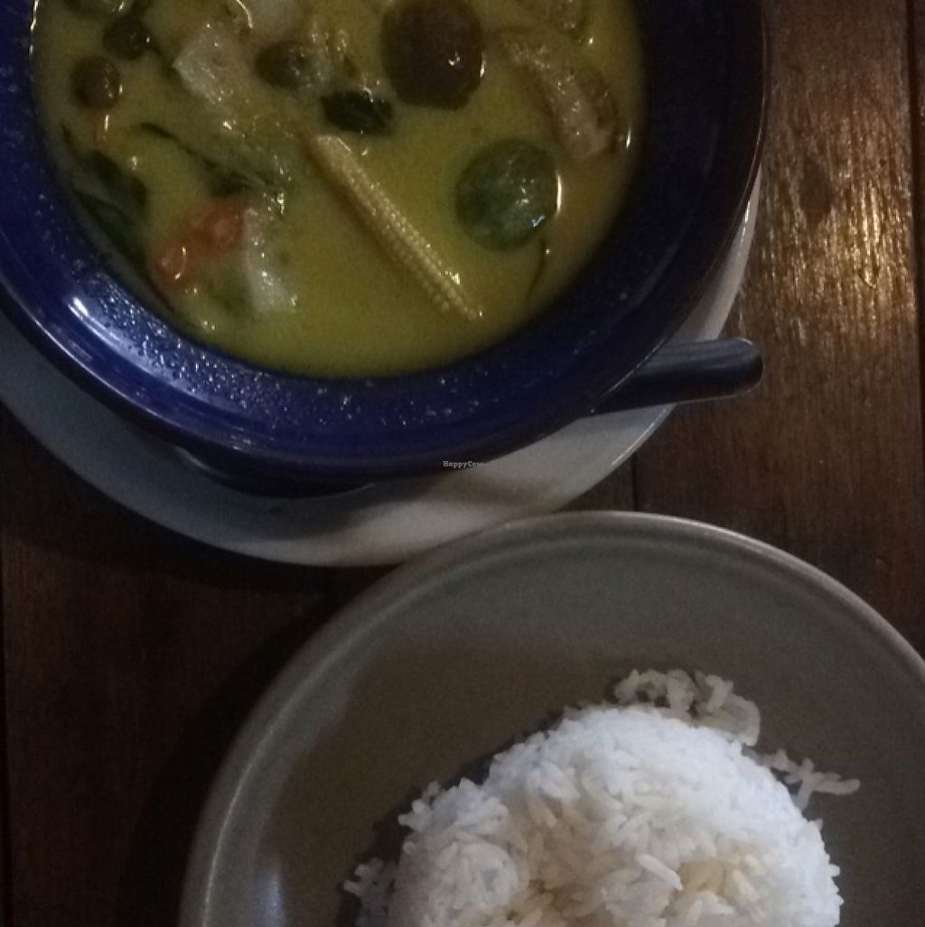 """Photo of Mama Cindy Restaurant  by <a href=""""/members/profile/andreafluss"""">andreafluss</a> <br/>Vegan Green Curry + Rice <br/> May 9, 2017  - <a href='/contact/abuse/image/91789/257351'>Report</a>"""