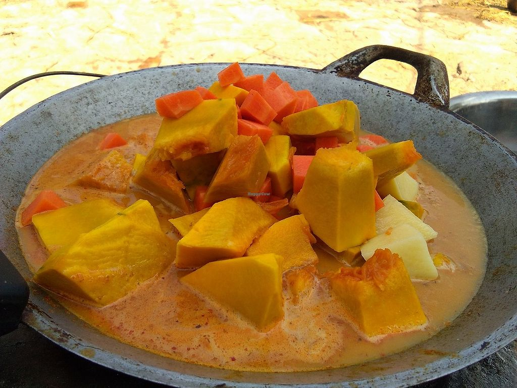 "Photo of Lek & Greg Vegan Camp  by <a href=""/members/profile/Plant%20Sugar"">Plant Sugar</a> <br/>Leks Thai pumpkin curry <br/> May 20, 2018  - <a href='/contact/abuse/image/91836/402370'>Report</a>"