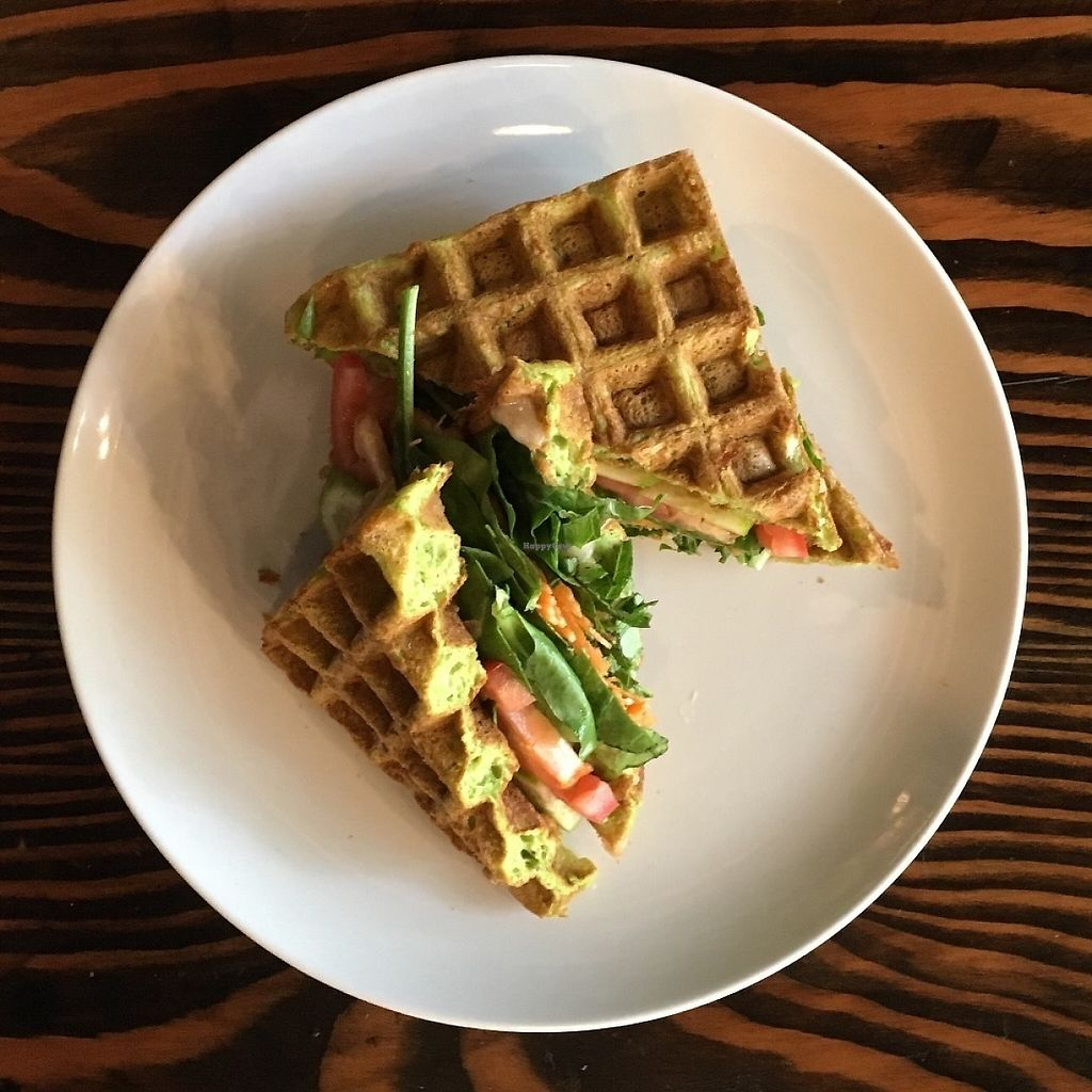 """Photo of CLOSED: Essbar  by <a href=""""/members/profile/xfoxtrotx"""">xfoxtrotx</a> <br/>Vegan kale waffle sandwich at Essbar in Brooklyn, New York <br/> June 4, 2017  - <a href='/contact/abuse/image/91863/265558'>Report</a>"""