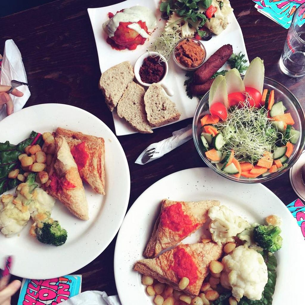 "Photo of ACU Kitchen Punx  by <a href=""/members/profile/Rezaline"">Rezaline</a> <br/>Two oven dish main courses and a starter mix.  <br/> July 23, 2015  - <a href='/contact/abuse/image/9196/110573'>Report</a>"