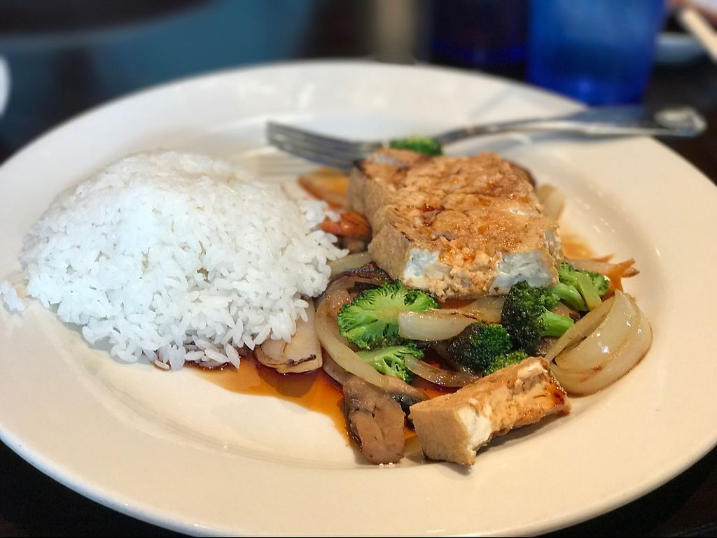 """Photo of Sekisui  by <a href=""""/members/profile/SecretVeganGirl"""">SecretVeganGirl</a> <br/>Teriyaki Tofu with steamed rice  <br/> May 13, 2017  - <a href='/contact/abuse/image/92048/258475'>Report</a>"""