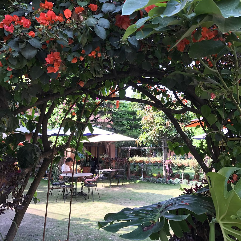 """Photo of Rabsel Garden Cafe at Shechen Monastery  by <a href=""""/members/profile/earthville"""">earthville</a> <br/>entrance <br/> May 13, 2017  - <a href='/contact/abuse/image/92083/258341'>Report</a>"""