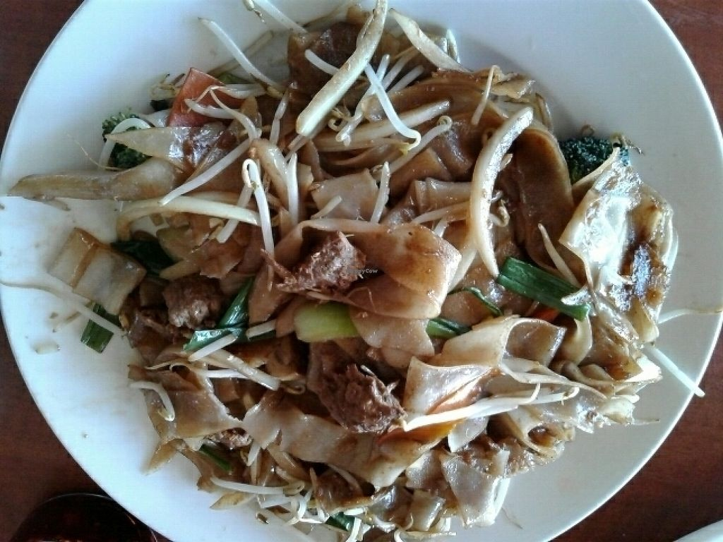 """Photo of Chengdu House  by <a href=""""/members/profile/SofiaCarrero"""">SofiaCarrero</a> <br/>Soy Meatballs Chow Fun <br/> May 13, 2017  - <a href='/contact/abuse/image/92093/258521'>Report</a>"""