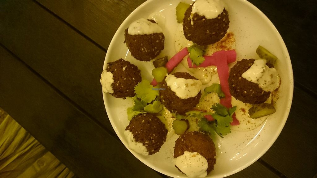 """Photo of The Hummus Club  by <a href=""""/members/profile/Cynthia1998"""">Cynthia1998</a> <br/>Falafels with tahini and pickles  <br/> May 14, 2017  - <a href='/contact/abuse/image/92106/258586'>Report</a>"""
