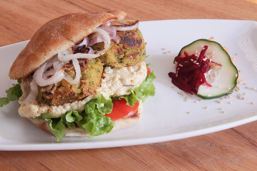 "Photo of Alma Amor  by <a href=""/members/profile/Milkin"">Milkin</a> <br/>Falafel with humus and salad in pitta style bread