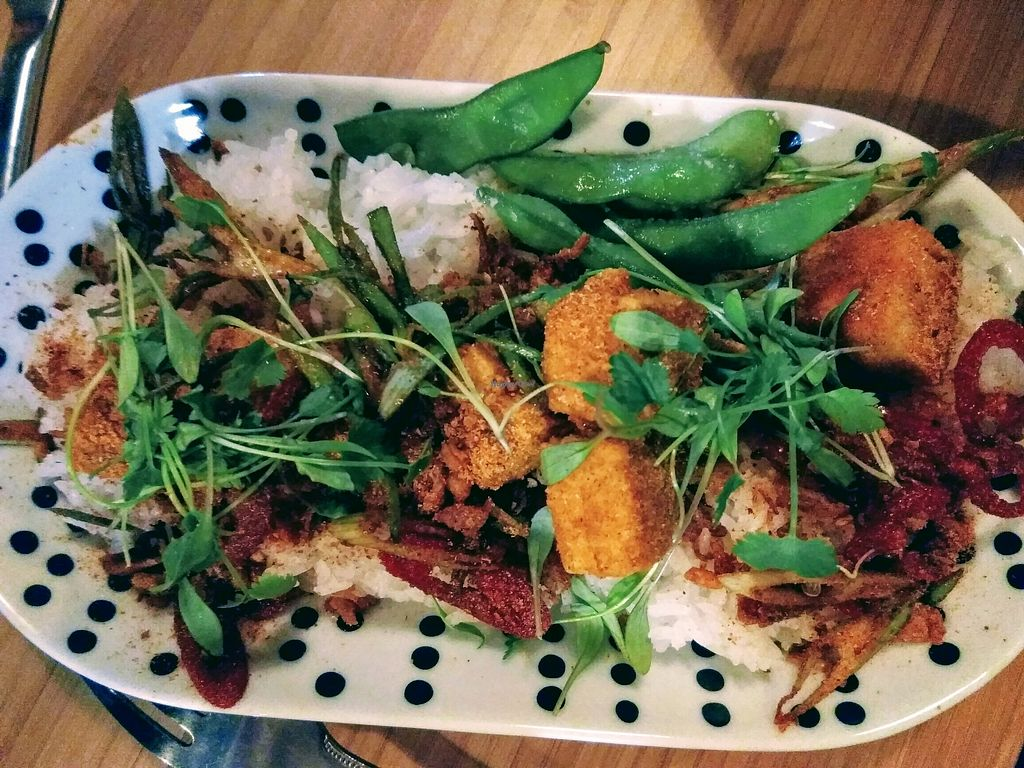 """Photo of Something at The Glad Cafe  by <a href=""""/members/profile/TrixieFirecracker"""">TrixieFirecracker</a> <br/>Salt & chilli tofu on a bed of white rice <br/> March 22, 2018  - <a href='/contact/abuse/image/92165/374486'>Report</a>"""