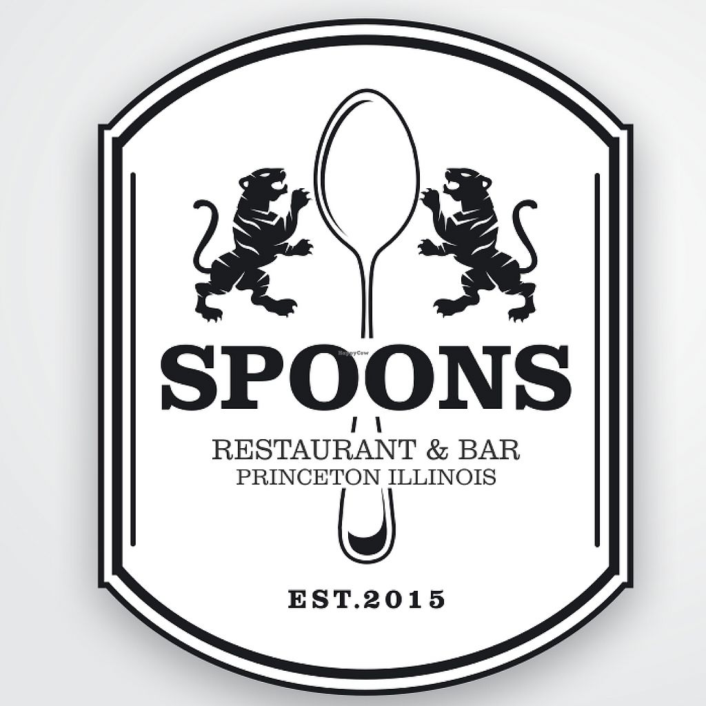 "Photo of Spoons  by <a href=""/members/profile/community5"">community5</a> <br/>Spoons <br/> May 16, 2017  - <a href='/contact/abuse/image/92193/259251'>Report</a>"
