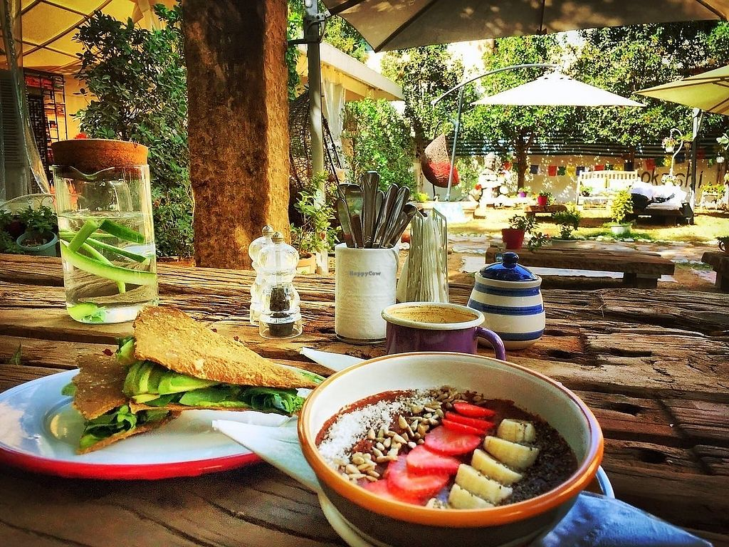 "Photo of Life'n One  by <a href=""/members/profile/EdaGungor"">EdaGungor</a> <br/>Sandwich verde and chocolate porridge and Ethiopian organic america in a magical garden.  <br/> May 21, 2017  - <a href='/contact/abuse/image/92339/260909'>Report</a>"