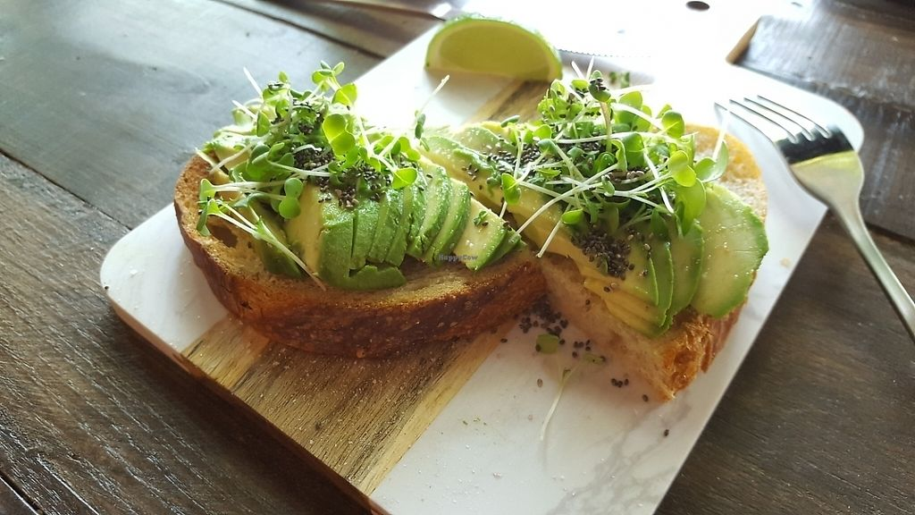 """Photo of Properly Fueled  by <a href=""""/members/profile/butikiteas"""">butikiteas</a> <br/>avacado toast! <br/> May 19, 2017  - <a href='/contact/abuse/image/92358/260332'>Report</a>"""