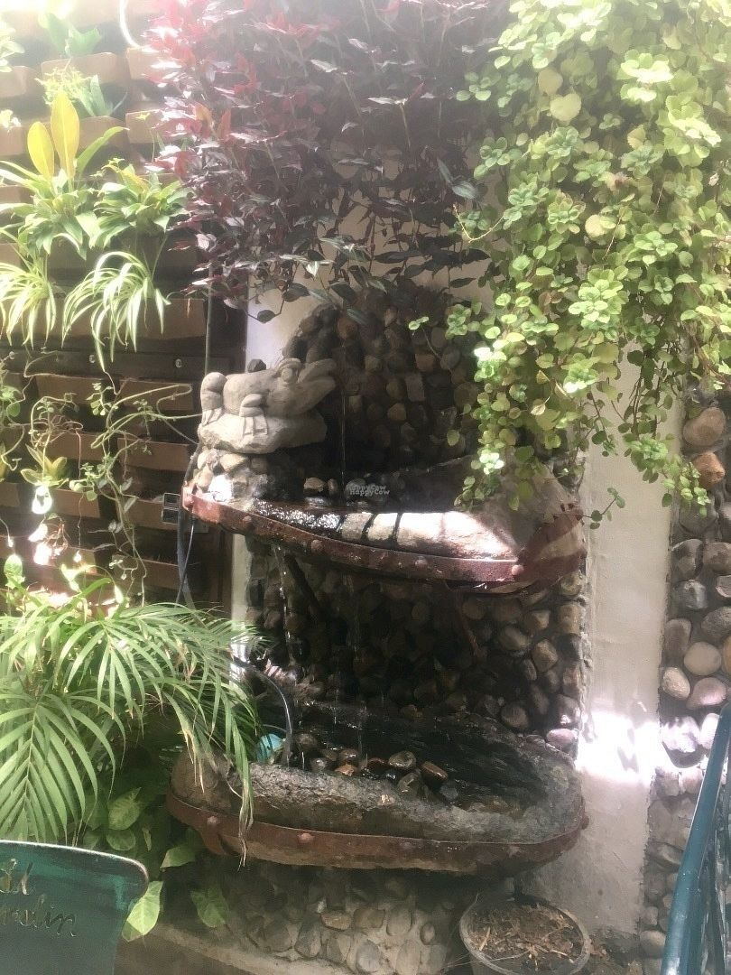 """Photo of El Jardin Buffet Nutricional Vegetariano  by <a href=""""/members/profile/DannyMac"""">DannyMac</a> <br/>A waterfall in the rear garden kinda dining area.  There were many cool things, but too many patrons to shoot much <br/> October 26, 2016  - <a href='/contact/abuse/image/9238/184452'>Report</a>"""