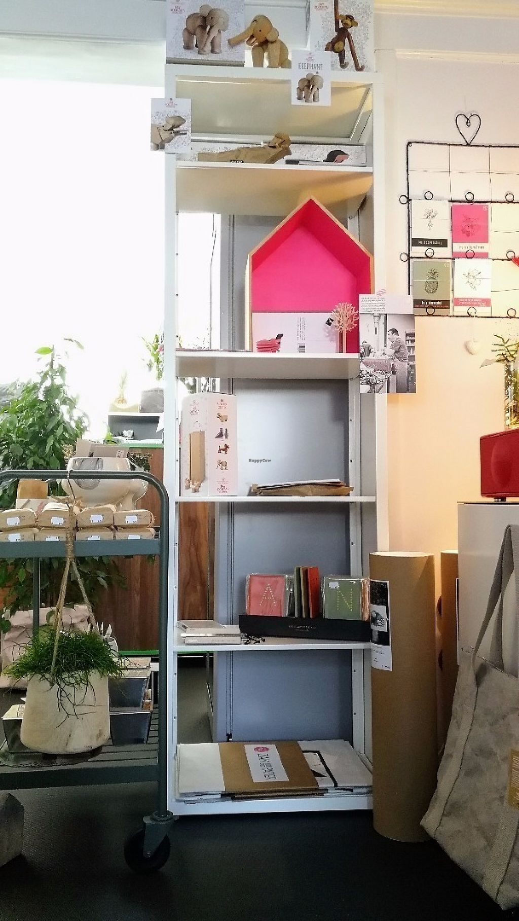 """Photo of tAK  by <a href=""""/members/profile/tAKplantbased"""">tAKplantbased</a> <br/>tAK 