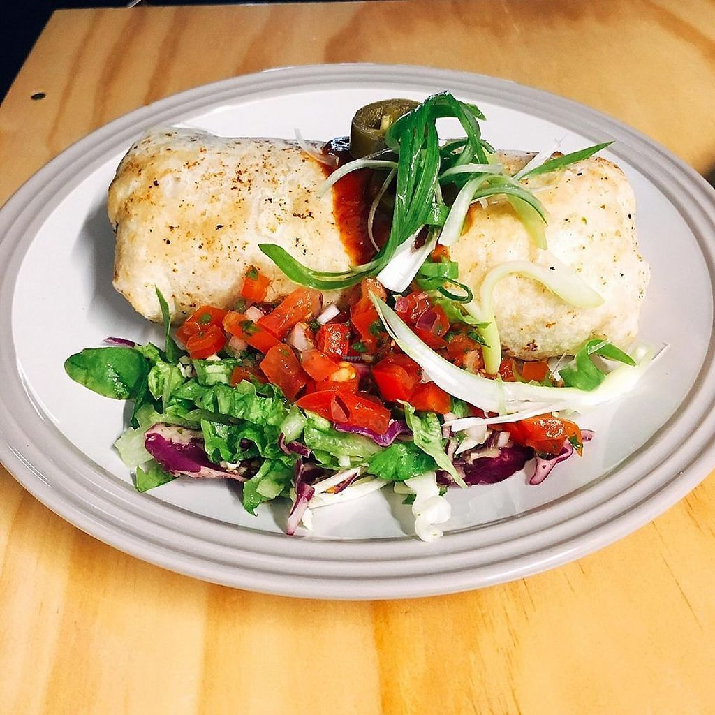 """Photo of Sun Dog Diner  by <a href=""""/members/profile/community5"""">community5</a> <br/>Vegan Priscilla Burrito <br/> May 19, 2017  - <a href='/contact/abuse/image/92440/260289'>Report</a>"""