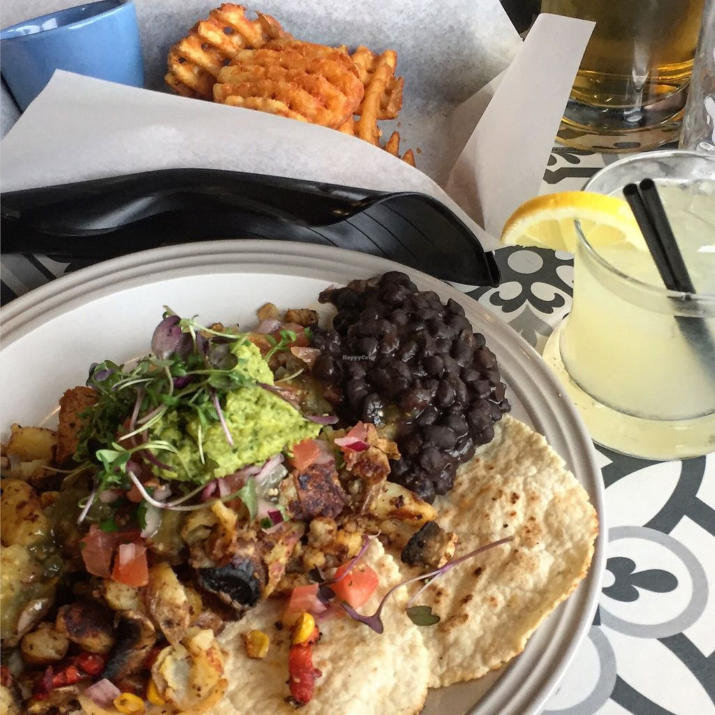 """Photo of Sun Dog Diner  by <a href=""""/members/profile/nicole_m"""">nicole_m</a> <br/>Renegades of hash (vegan) with lattice fries  <br/> September 5, 2017  - <a href='/contact/abuse/image/92440/301314'>Report</a>"""