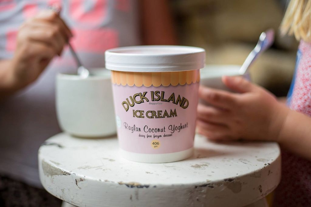 "Photo of Duck Island Ice Cream  by <a href=""/members/profile/community5"">community5</a> <br/>Dairy free frozen coconut yoghurt <br/> May 19, 2017  - <a href='/contact/abuse/image/92472/260377'>Report</a>"