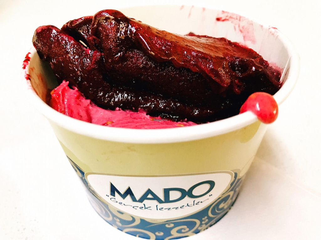 "Photo of Mado  by <a href=""/members/profile/veganoteacher"">veganoteacher</a> <br/>Vegan Ice-cream options <br/> May 22, 2017  - <a href='/contact/abuse/image/92569/261348'>Report</a>"