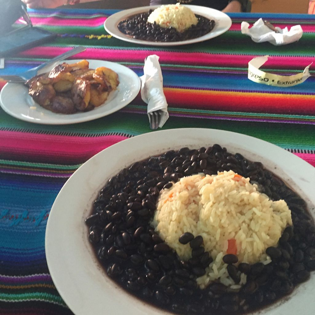 "Photo of Cafe Yax-Ha  by <a href=""/members/profile/americanvegan"">americanvegan</a> <br/>Rice and Beans and Platanos  <br/> May 22, 2017  - <a href='/contact/abuse/image/92579/261356'>Report</a>"