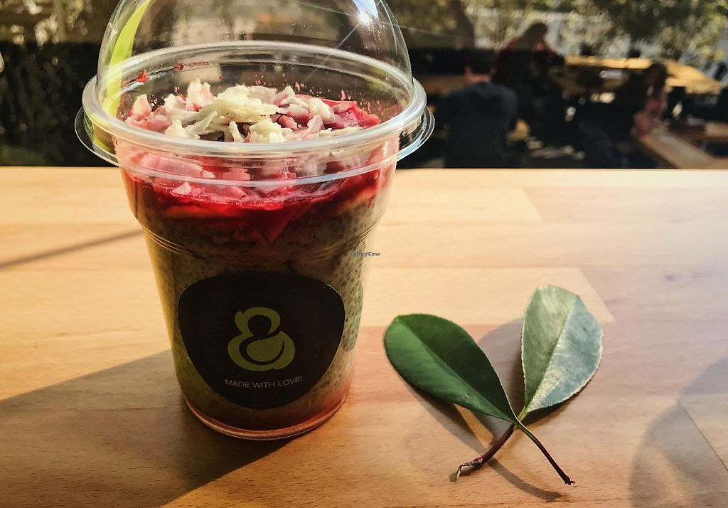 """Photo of green & protein  by <a href=""""/members/profile/Qik"""">Qik</a> <br/>Vegan Chia Pudding with berries  <br/> May 25, 2017  - <a href='/contact/abuse/image/92657/262471'>Report</a>"""