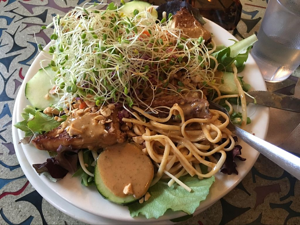 """Photo of Cafe Evolution  by <a href=""""/members/profile/KerryGoesVegan"""">KerryGoesVegan</a> <br/>Evolution Noodles. Yum! <br/> February 25, 2016  - <a href='/contact/abuse/image/9268/137795'>Report</a>"""