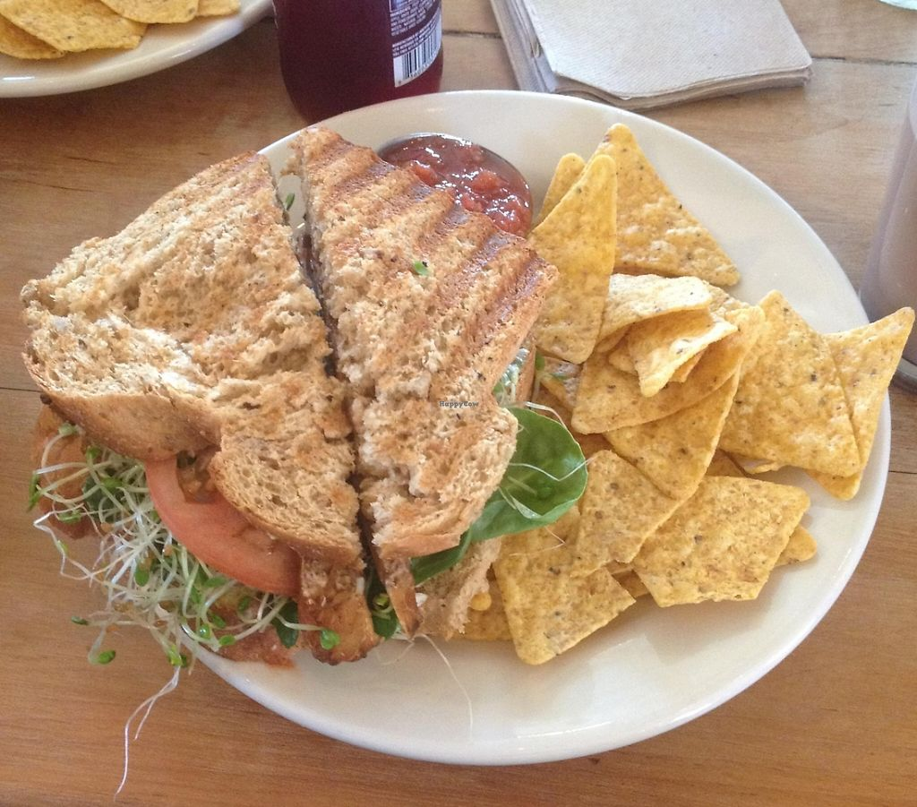 """Photo of Cafe Evolution  by <a href=""""/members/profile/kelwood13"""">kelwood13</a> <br/>Vegan BLT <br/> February 28, 2016  - <a href='/contact/abuse/image/9268/202735'>Report</a>"""