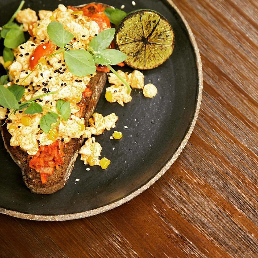 "Photo of Cafe Diversity  by <a href=""/members/profile/community5"">community5</a> <br/>Scrambled tofu with house-made Korean kimchi on dark rye bread sprinkled with toasted sesame and charred lime <br/> May 24, 2017  - <a href='/contact/abuse/image/92765/262015'>Report</a>"