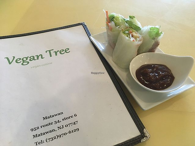 "Photo of Vegan Tree  by <a href=""/members/profile/Isamara"">Isamara</a> <br/>Summer rolls  <br/> June 17, 2017  - <a href='/contact/abuse/image/92897/270204'>Report</a>"