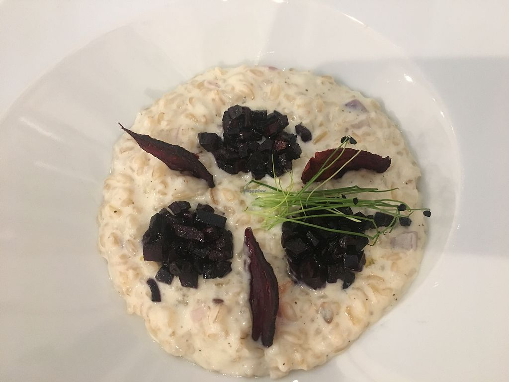 "Photo of Verdegusto  by <a href=""/members/profile/marcodamb"">marcodamb</a> <br/>fantastic and tasty risotto  <br/> July 22, 2017  - <a href='/contact/abuse/image/92908/283404'>Report</a>"