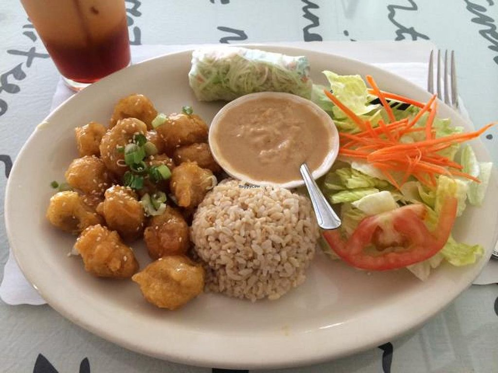"""Photo of CLOSED: Vegan House  by <a href=""""/members/profile/cha-yen%20monster"""">cha-yen monster</a> <br/>Orange chicken lunch special.  <br/> May 23, 2014  - <a href='/contact/abuse/image/9294/70572'>Report</a>"""