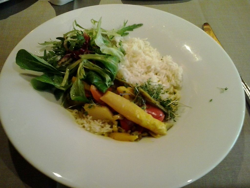 """Photo of Ringhotel Die Gams  by <a href=""""/members/profile/Markvs"""">Markvs</a> <br/>Asparagus with other vegetables in curry-sauce with rice and salad - 100% vegan <br/> May 30, 2017  - <a href='/contact/abuse/image/92974/264100'>Report</a>"""