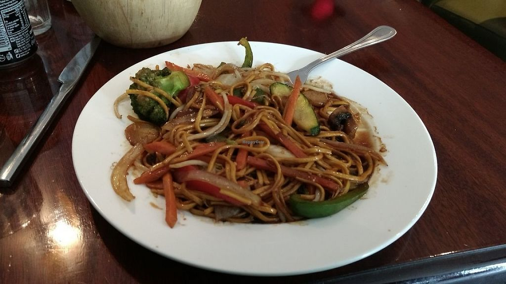 "Photo of Lotus  by <a href=""/members/profile/ArySimieli"">ArySimieli</a> <br/>Chow mien with vegetables (vegetarian) <br/> May 29, 2017  - <a href='/contact/abuse/image/93011/263732'>Report</a>"