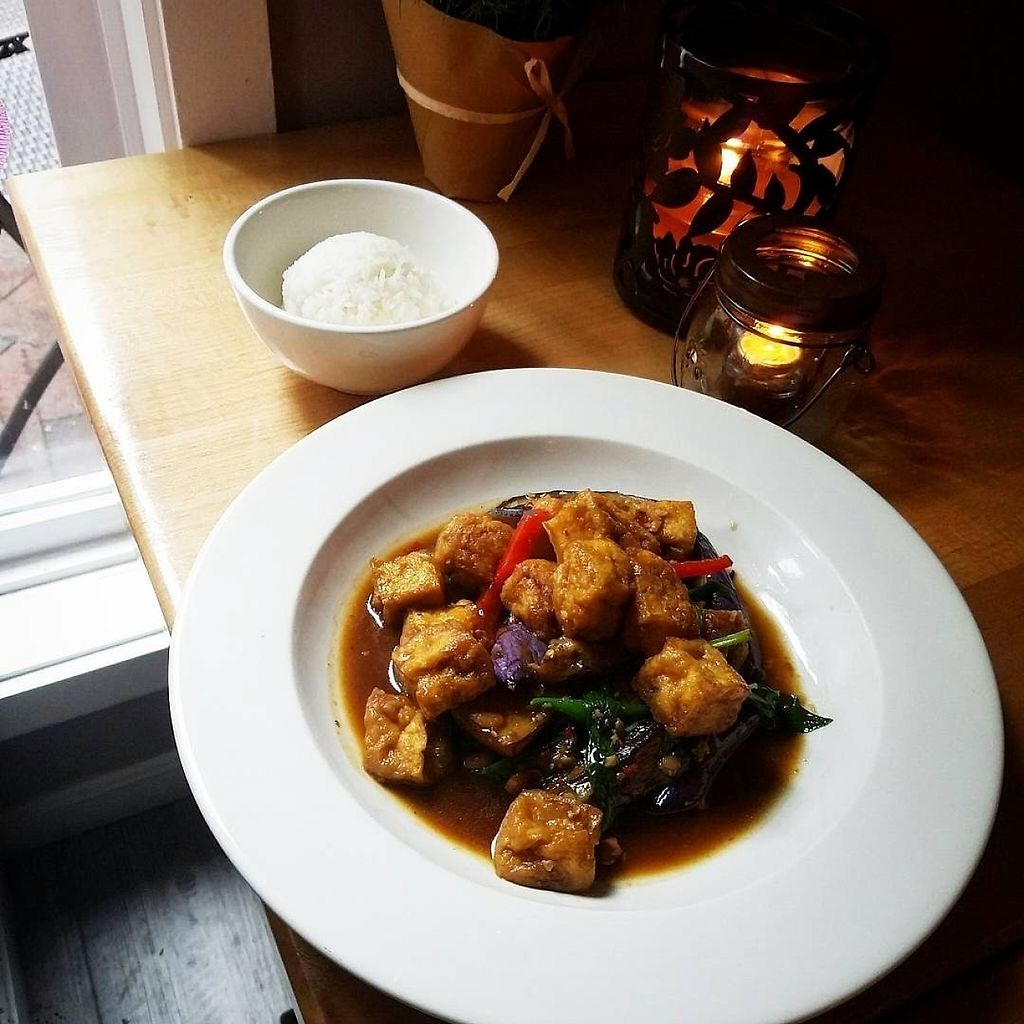 """Photo of Khun Nine Thai  by <a href=""""/members/profile/MerryRose"""">MerryRose</a> <br/>stir-fried tofu and thai eggplant with rice on the side <br/> June 3, 2017  - <a href='/contact/abuse/image/93080/265200'>Report</a>"""