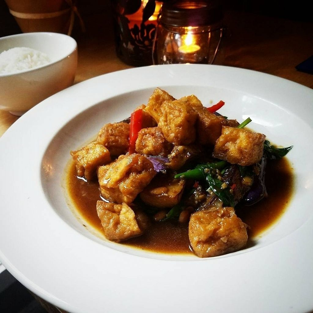 """Photo of Khun Nine Thai  by <a href=""""/members/profile/MerryRose"""">MerryRose</a> <br/>close-up of stir-fried tofu and Thai eggplant <br/> June 3, 2017  - <a href='/contact/abuse/image/93080/265201'>Report</a>"""