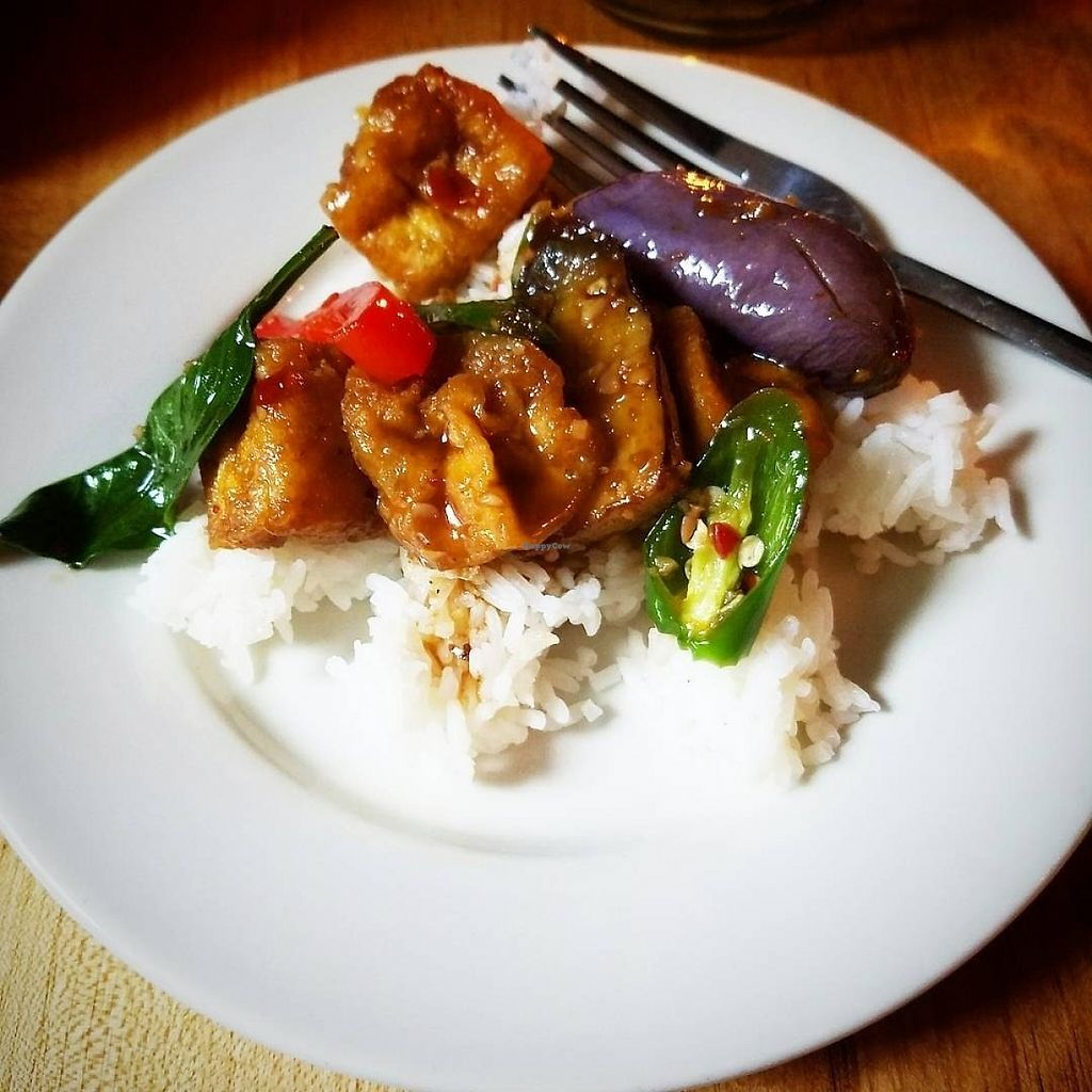 """Photo of Khun Nine Thai  by <a href=""""/members/profile/MerryRose"""">MerryRose</a> <br/>plated rice with stir-fried tofu and Thai eggplant with peppers, onions, and basil <br/> June 3, 2017  - <a href='/contact/abuse/image/93080/265203'>Report</a>"""