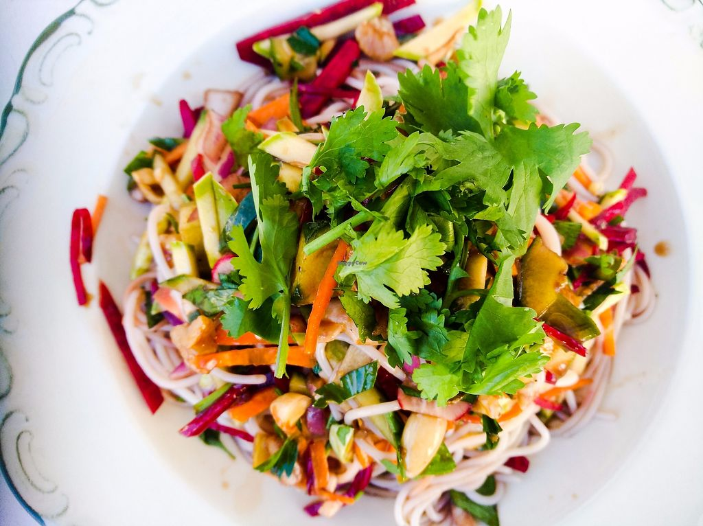 "Photo of Cafe Michaelangelo  by <a href=""/members/profile/YuvalGalCohen"">YuvalGalCohen</a> <br/>Colorful Asian Salad!