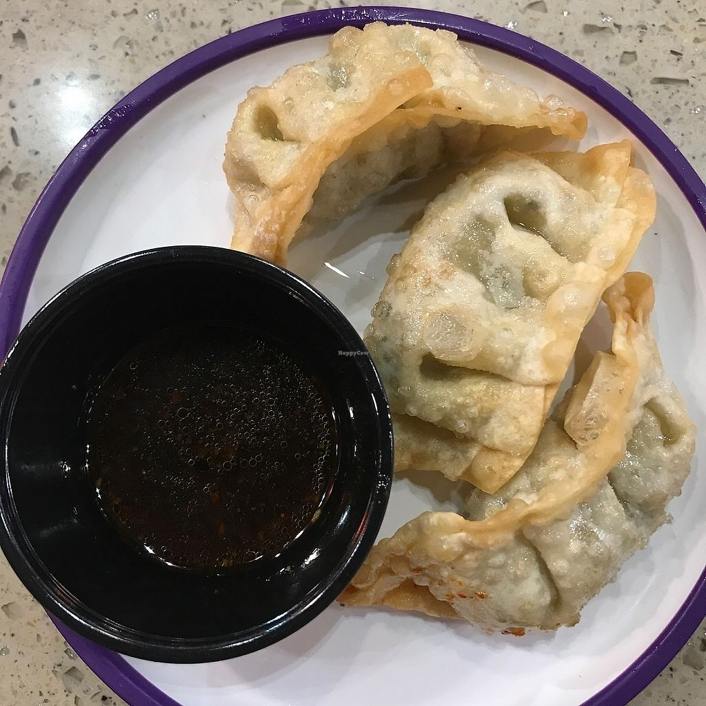 """Photo of Yo Sushi - Airport  by <a href=""""/members/profile/earthville"""">earthville</a> <br/>gyoza <br/> December 29, 2017  - <a href='/contact/abuse/image/93102/340555'>Report</a>"""