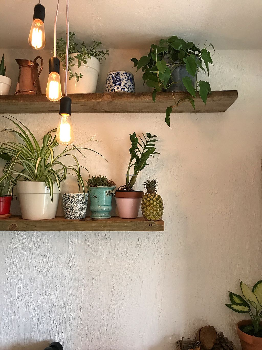 """Photo of Nourish'd Cafe & Juicery  by <a href=""""/members/profile/LaurenClaire"""">LaurenClaire</a> <br/>Cafe decor <br/> October 17, 2017  - <a href='/contact/abuse/image/93127/316042'>Report</a>"""
