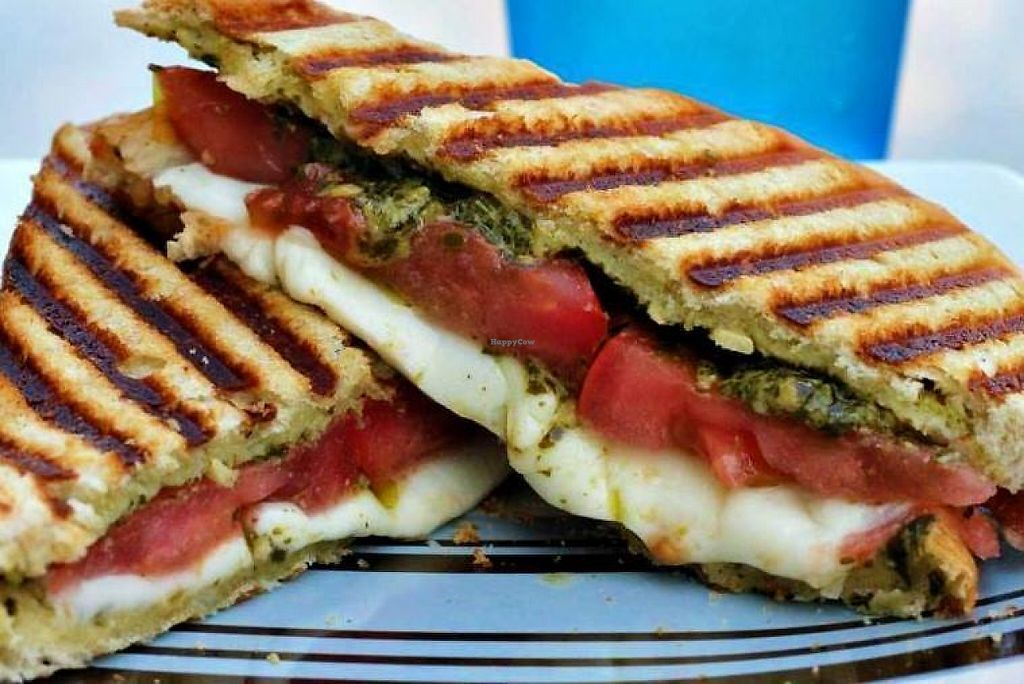 """Photo of The Temple Cafe  by <a href=""""/members/profile/community5"""">community5</a> <br/>Vegan panini <br/> June 2, 2017  - <a href='/contact/abuse/image/93243/264980'>Report</a>"""