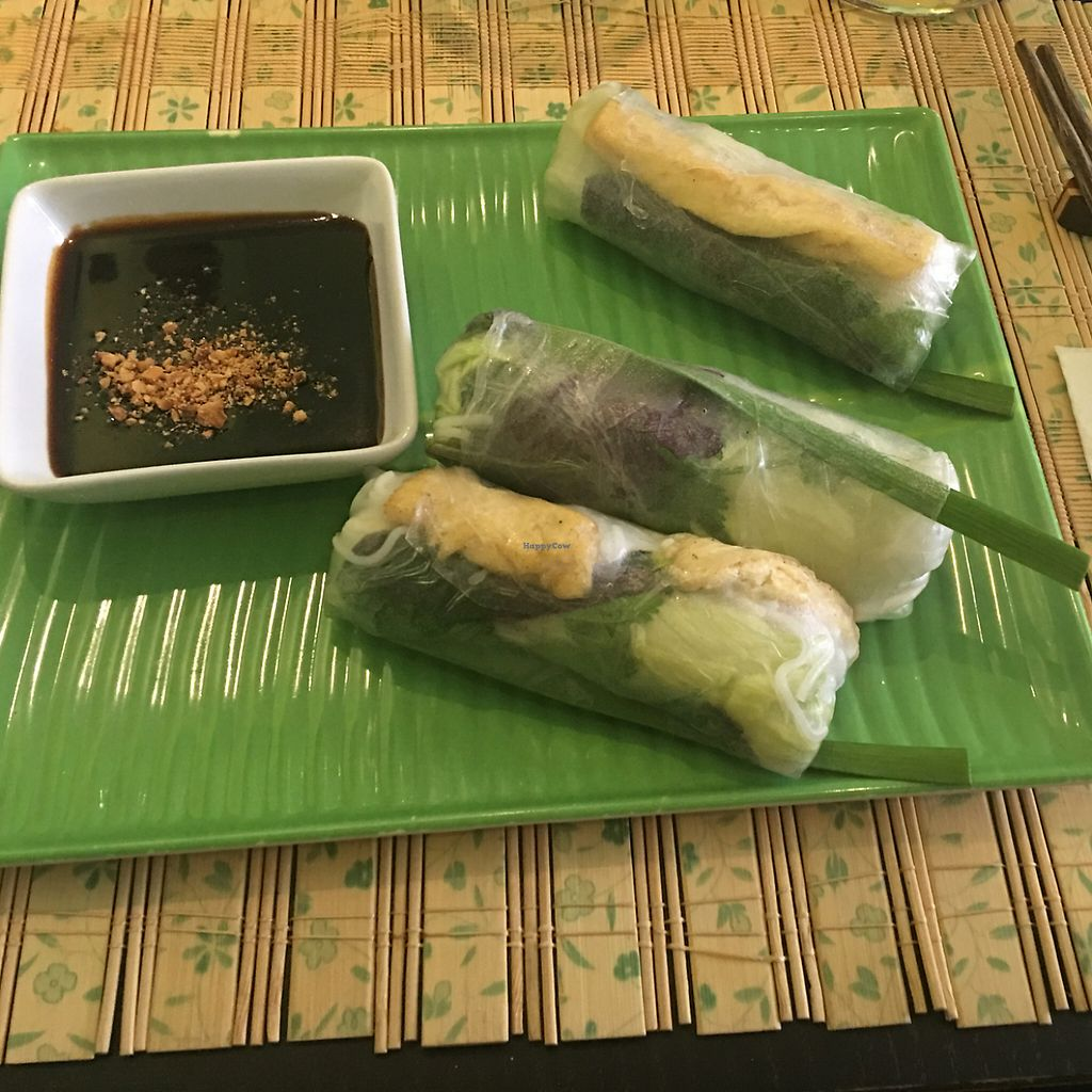 """Photo of Pho3mien  by <a href=""""/members/profile/AndyT"""">AndyT</a> <br/>Vietnamese rice paper rolls (vegan) <br/> June 6, 2017  - <a href='/contact/abuse/image/93299/266272'>Report</a>"""